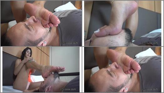 Foot Fetish – BFF Videos – Under Goddess Shayanne Sweaty Feet Pt.2 –  Goddess Shayanne