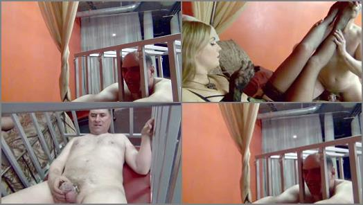 DomNation  CAGED MAN MEAT   Mistress Renee Trevi preview