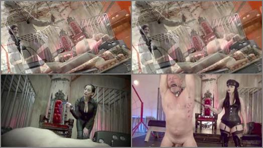 Female Domination – DomNation – CRUEL AND SADISTIC WHIPPINGS #4 –  Quinn Helix, Bella Blackheart, Bossy Delilah, January Seraph and Cybill Troy