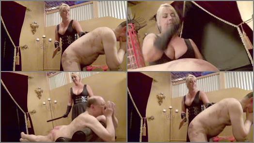 Female Domination – DomNation – DISCIPLINING A BRAND SPANKING NEW SLAVE (Full Version) Starring Miss Joclyn Stone