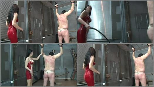 Whipping – Femdom Goddesses – 130 whips from mistress – first the whip then cane then paddle