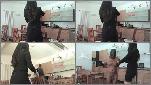 Facepunch – FemmeFataleFilms – Slave In Waiting – Part 1 –  Lady Mephista