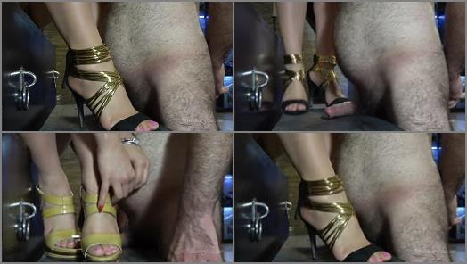 MISTRESS GAIA  PIGGYS CRUSHED PORKER  preview