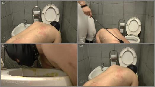 Toilet Slavery – Mistress Gaia – Punishing my toilet slave