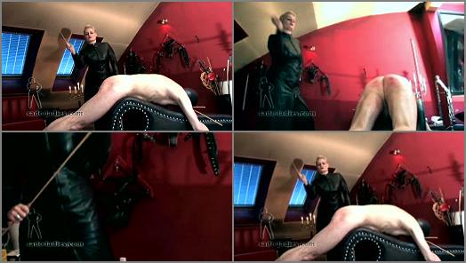 SADO LADIES Femdom Clips  Caning In Leather   Madame Charlotte preview