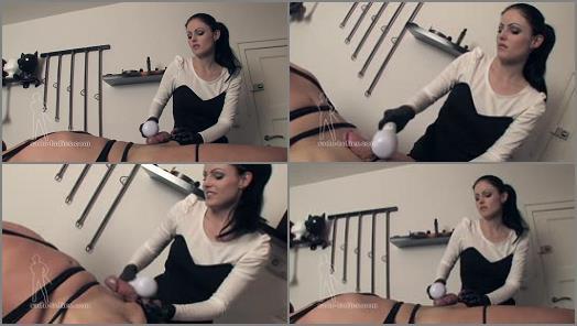 Handjob – SADO LADIES Femdom Clips – Sadistic Dry Milking –  Mistress Blackdiamoond