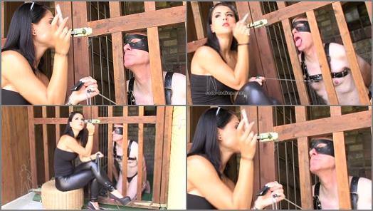 SADO LADIES Femdom Clips  Spoiled Girls Ashtray   Lady Chanel  preview