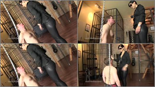 Face Slapping – SADO LADIES Femdom Clips – Today Is Slapping Day  Starring Chanel