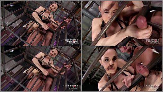 VICIOUS FEMDOM EMPIRE  Interactive Forced Bi Cuckold POV   Chanel Preston preview