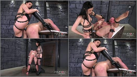 Anal -  VICIOUS FEMDOM EMPIRE – Whore Hole -  Mistress Marley Brinx