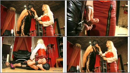Bondage Male –  Amator – CBT and Facesitting –  Syonera von Styx