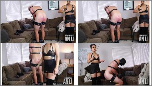 An Lis Ass Emporium  Pain Training  preview