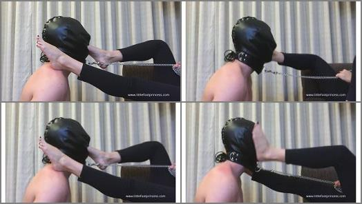 SLAVE WORSHIPS MY FEET AND GETS HIS FACE SLAPPED BY MY FEET preview