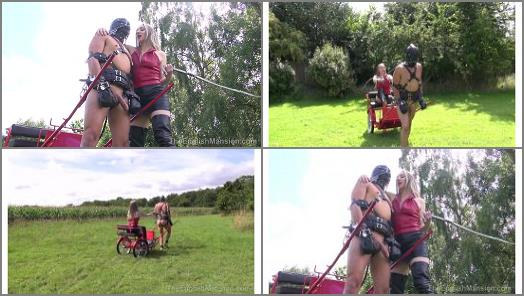 Physical Training – The English Mansion – More Blind Obedience – Part 2 –  Mistress Sidonia