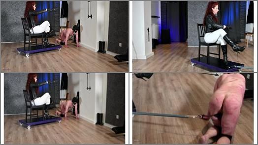 Mistress Lady Renee  Broken ponyboy whipped to pull faster  preview