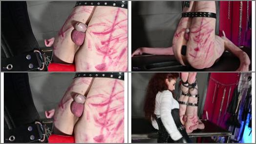 Mistress Lady Renee  Slut hole fucked  preview