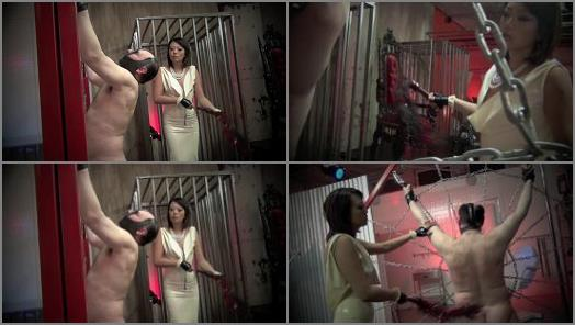 Female Superiority –  Asian Cruelty – TRAPPED IN MY WEB OF TORMENT Starring Goddess Miko