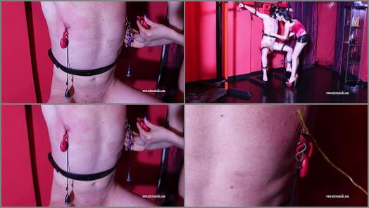 Mistress Iside  NIPPLES TORN  preview