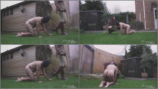Goddess Gynarchy  Male Chauvinist Turned Into Her Dog  preview