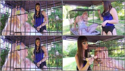 The English Mansion  Pretty Pet Play  Part 1   Miss Vivienne lAmour  preview