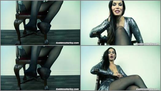 Goddess Harley starring in video Stomped Kicked And Trampled For Nylon Feet preview