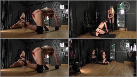 Mistress Whiplash Download – Mistress Whiplash – Slave into Dog